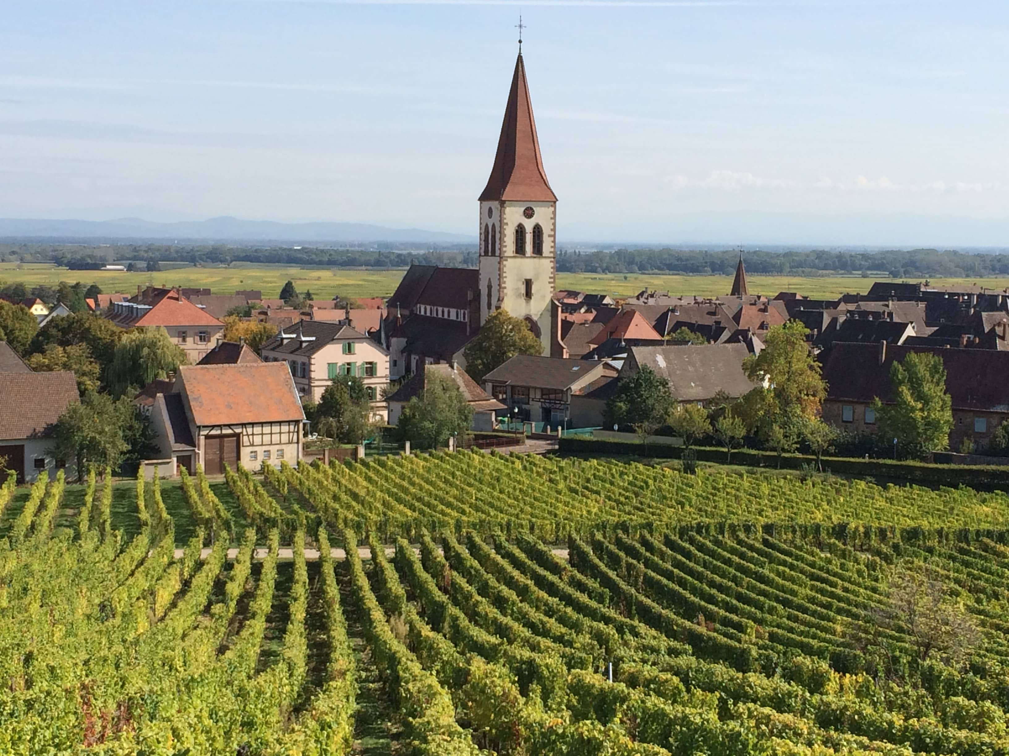 Ammerschwihr, Alsace, as seen from the vineyards. ©Deborah L. Jacobs